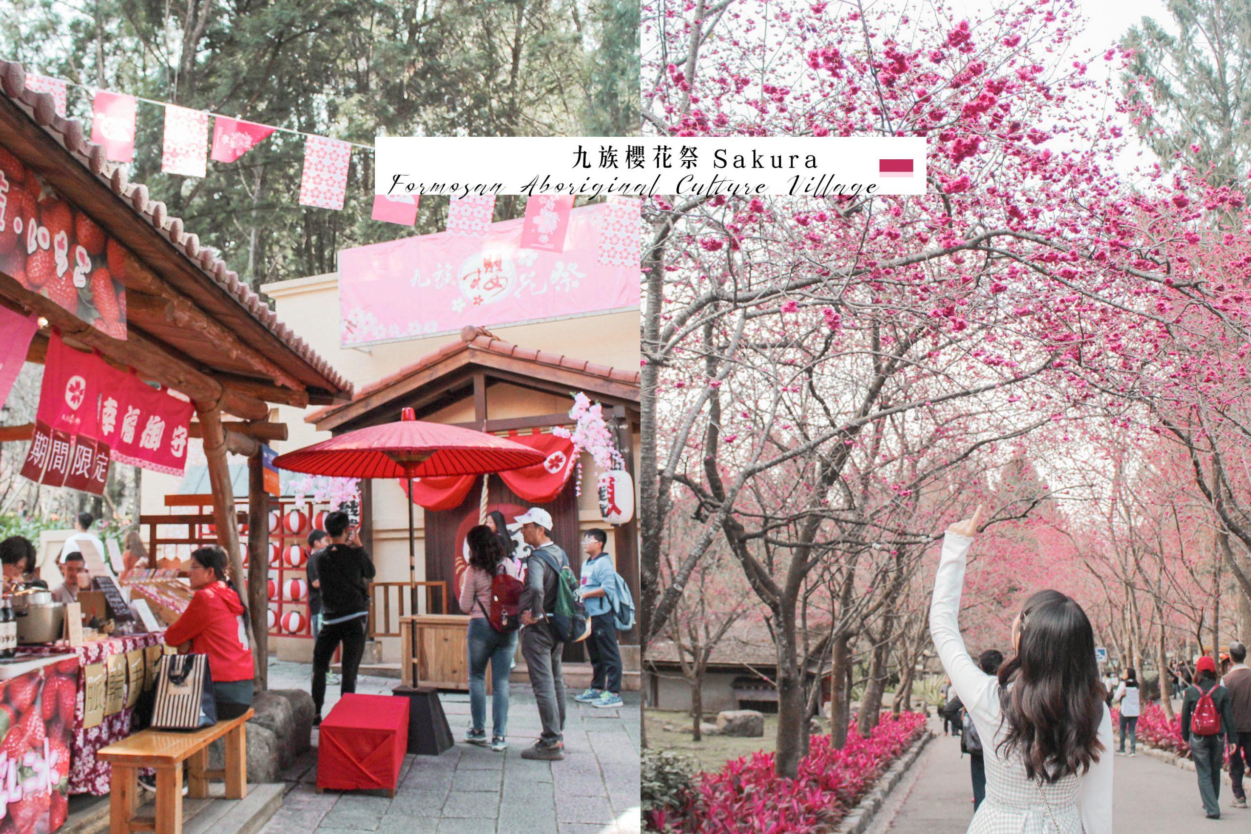 南投魚池景點|九族櫻花祭- 2020最新櫻花季花況|搭乘纜車看櫻花|西班牙海岸